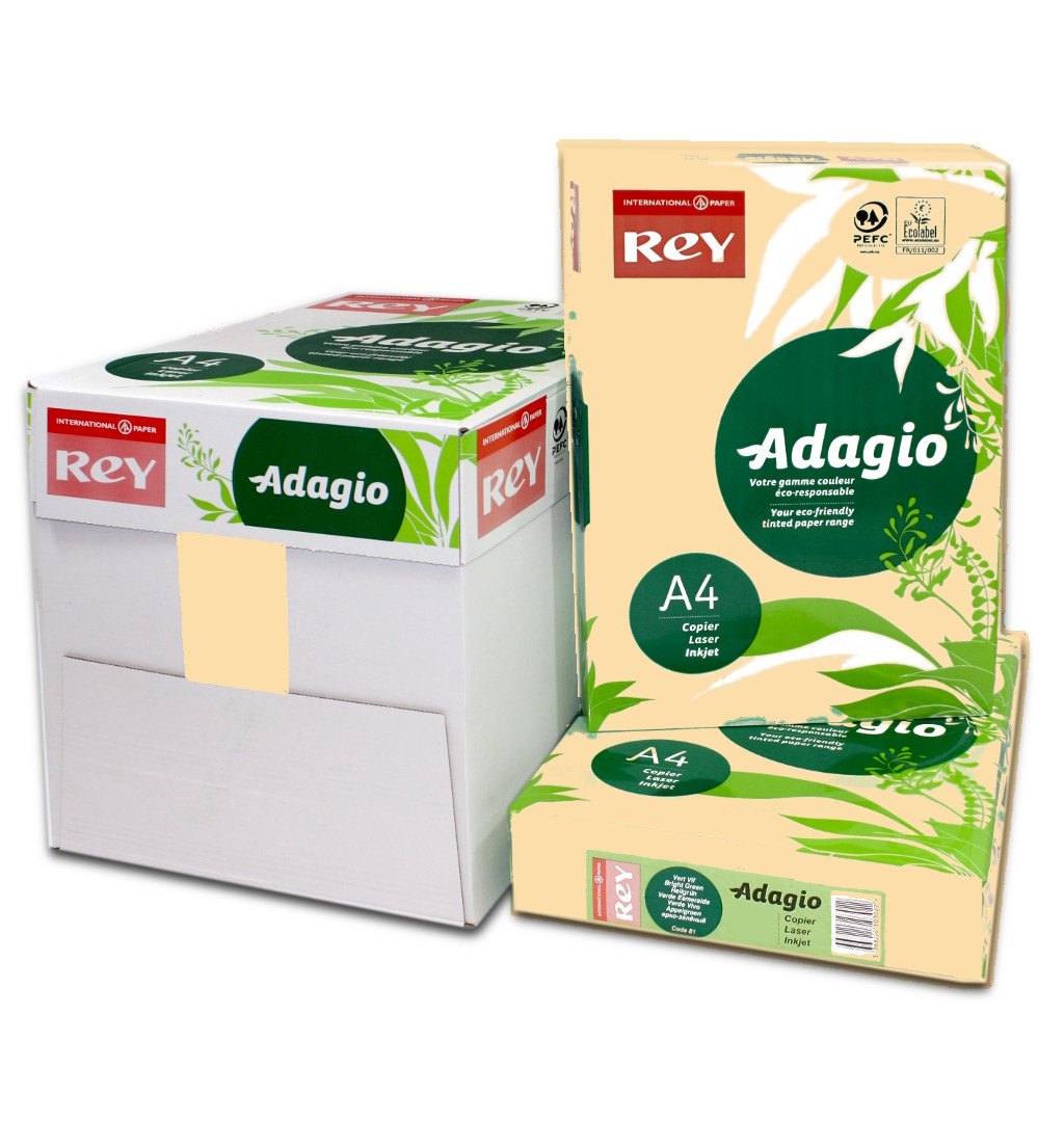 Adagio A4 Card Salmon 160gsm Box