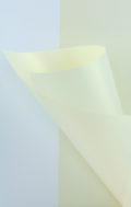 Pearlescent White Gold Paper 120gsm