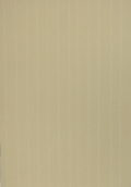 Saville Row Pinstripe Camel Coloured Card 300gsm